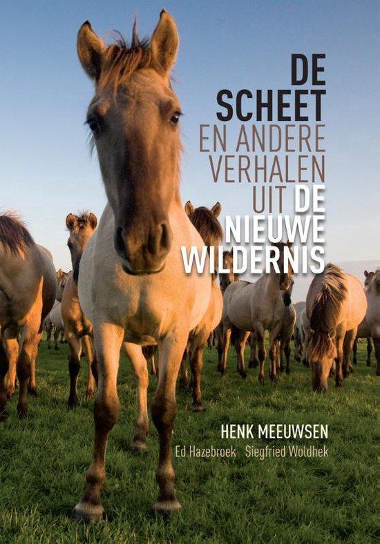 De scheet - Henk Meeuwsen pdf epub