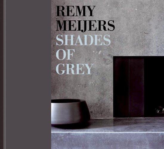 Cover van het boek 'Remy Meijers - Shades of Grey - 2-talige editie'