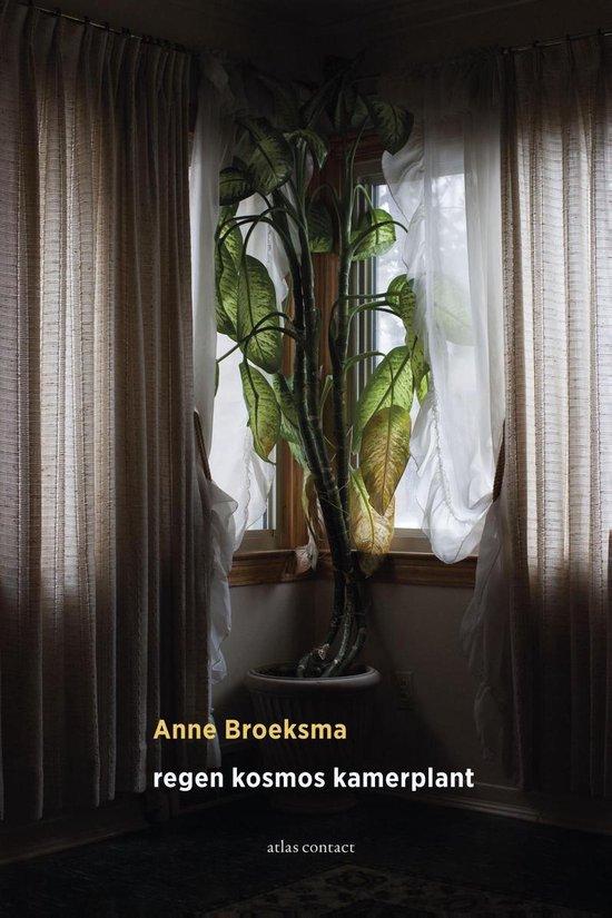 Regen kosmos kamerplant - Anne Broeksma |
