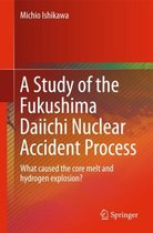 A Study of the Fukushima Daiichi Nuclear Accident Process