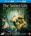 The Secret Life Of The Rainforest (3D+2D Blu-ray)