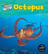 Dieren in beeld  -   Octopus