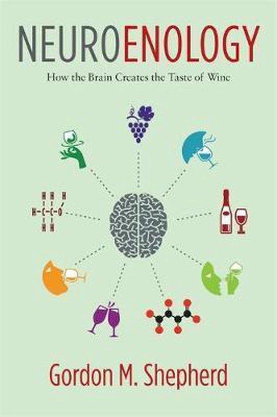 Neuroenology