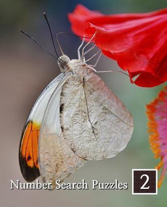 Number Search Puzzles 2