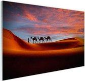 Woestijn met kamelen Glas 180x120 cm - Foto print op Glas (Plexiglas wanddecoratie) XXL / Groot formaat!