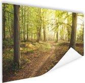 Een weg door het bos Poster 90x60 cm - Foto print op Poster (wanddecoratie woonkamer / slaapkamer)