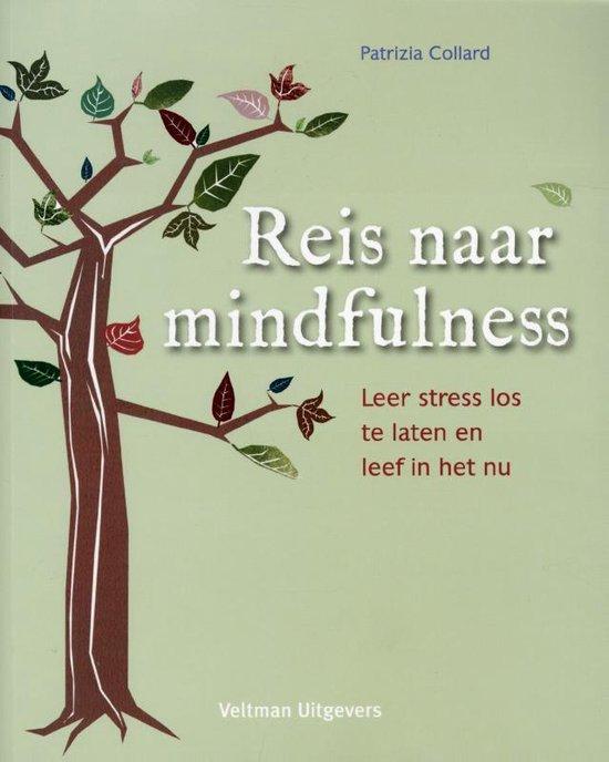 Reis naar mindfulness - Patrizia Collard  
