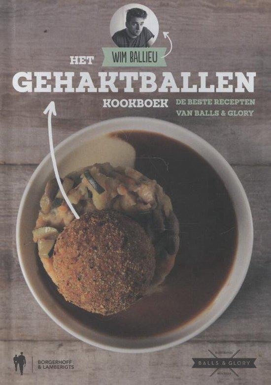 Het gehaktballen kookboek - Wim Ballieu |