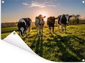 Zonsondergang achter vier Friese koeien Tuinposter 80x60 cm - Tuindoek / Buitencanvas / Schilderijen voor buiten (tuin decoratie)