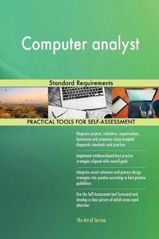 Computer Analyst