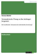 Textanalytische Übung zu Ilse Aichinger: Seegeister
