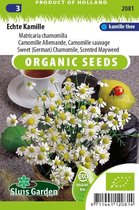 Sluis Garden - Echte Kamille Biologisch (Matricaria recutita)