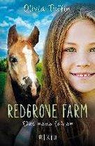 Redgrove Farm 02 - Das neue Fohlen