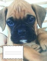 Boxer Puppy Graph Paper 4x4 Notebook