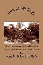 Boek cover Big Mine Run van Harry M. Bobonich Ph.D.