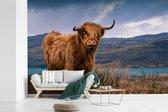 Fotobehang vinyl - Schotse hooglander bij een prachtig meer breedte 390 cm x hoogte 260 cm - Foto print op behang (in 7 formaten beschikbaar)