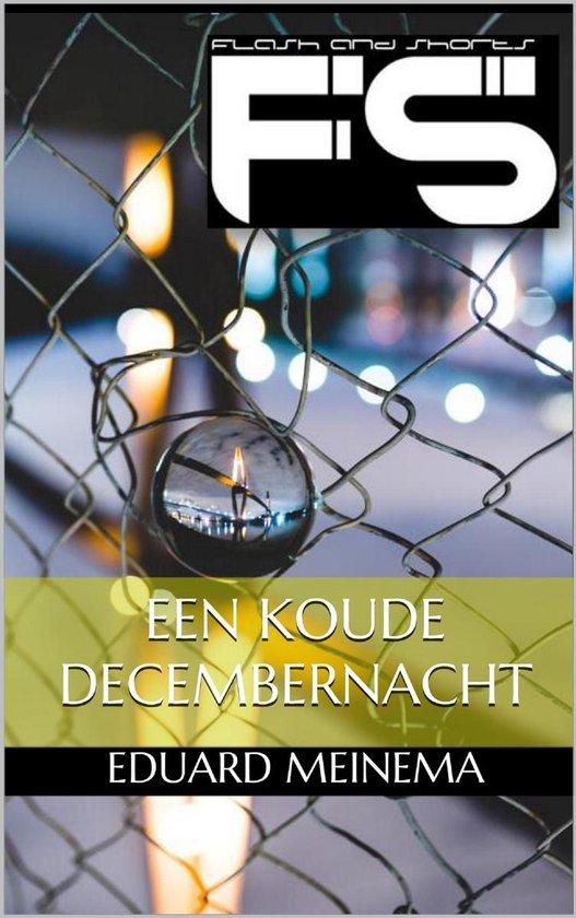 Een koude decembernacht - Eduard Meinema  