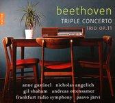 Triple Concert Trio Op.11
