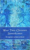 Waar twee oceanen samenkomen