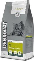 Denkadog Denkacat Special Kitten