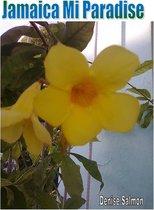 Boek cover Jamaica Mi Paradise van Denise Salmon