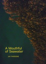 Boek cover A Mouthful of Seawater van Jay Parsons