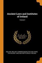 Ancient Laws and Institutes of Ireland; Volume 3