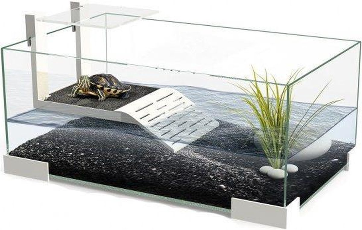 Ciano Tartarium 40 Terrarium - 40 x 25 x 20 cm - Glas - Wit
