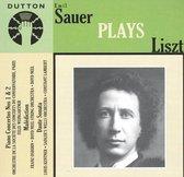 Emil Sauer Plays Liszt