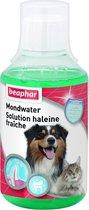 Beaphar Mondwater - 250 ml
