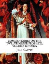 Commentaries on the Twelve Minor Prophets, Volume 1