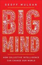 Boek cover Big Mind van Geoff Mulgan