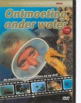 Duiken Ontmoeting onder water