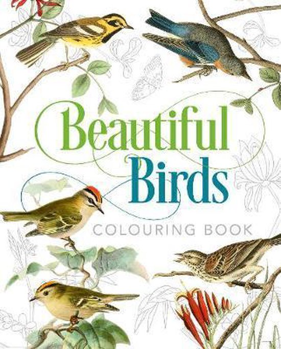 Boek cover Beautiful Birds Colouring Book van Peter Gray (Paperback)