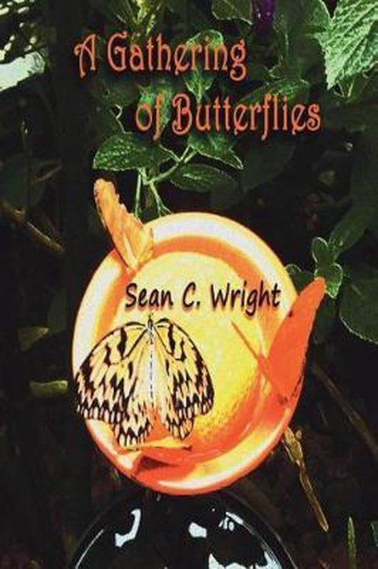 A Gathering of Butterflies