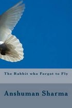 The Rabbit Who Forgot to Fly