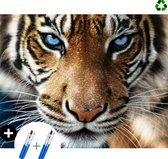 deeds.® - Schilderen op nummer volwassenen - Paint by number - Verven op nummer - Tijger - Tiger - Portret - DIY set +Extra Penselen!
