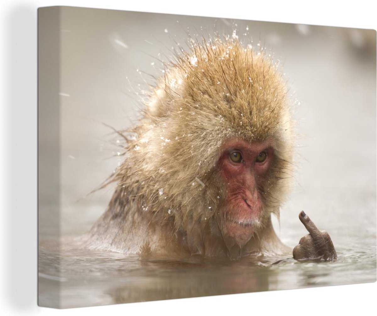 Canvas Schilderij Onbeschofte dieren - Een Japanse makaak in in water met sneeuw canvas 2cm - 90x60 cm - Foto print op Canvas schilderij (wanddecoratie woonkamer / slaapkamer)