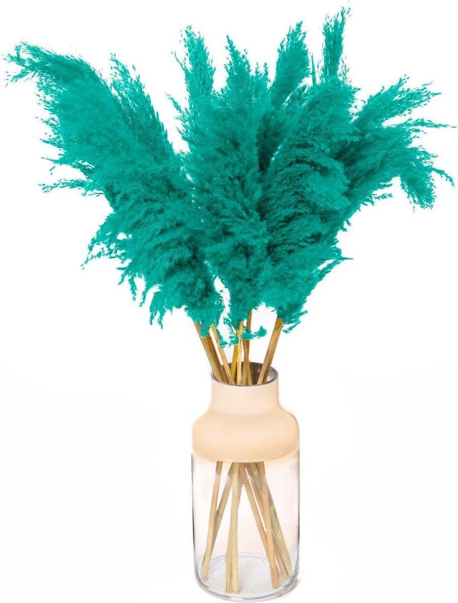 Pampas Pluimen - Droogbloemen - 5 stuks - Turquoise - Pampas Gras - Fluffy Pluimen - 90cm
