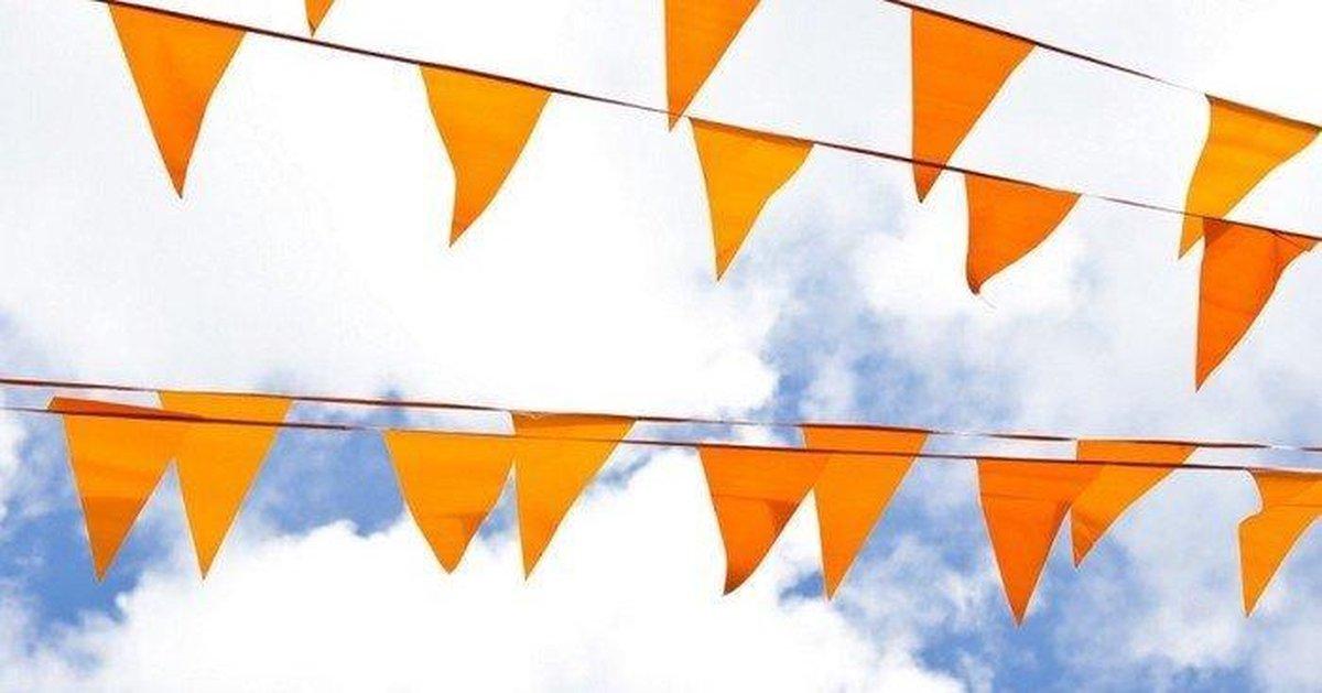Oranje Vlaggetjes Oranje vlaggenlijn met 20 puntvlaggen - EK accessoires - Oranje versiering - EK 20