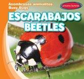 Escarabajos / Beetles