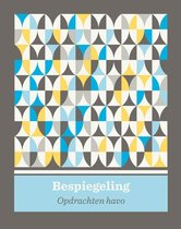 Bespiegeling Kunst Algemeen opdrachtenboek havo bovenbouw