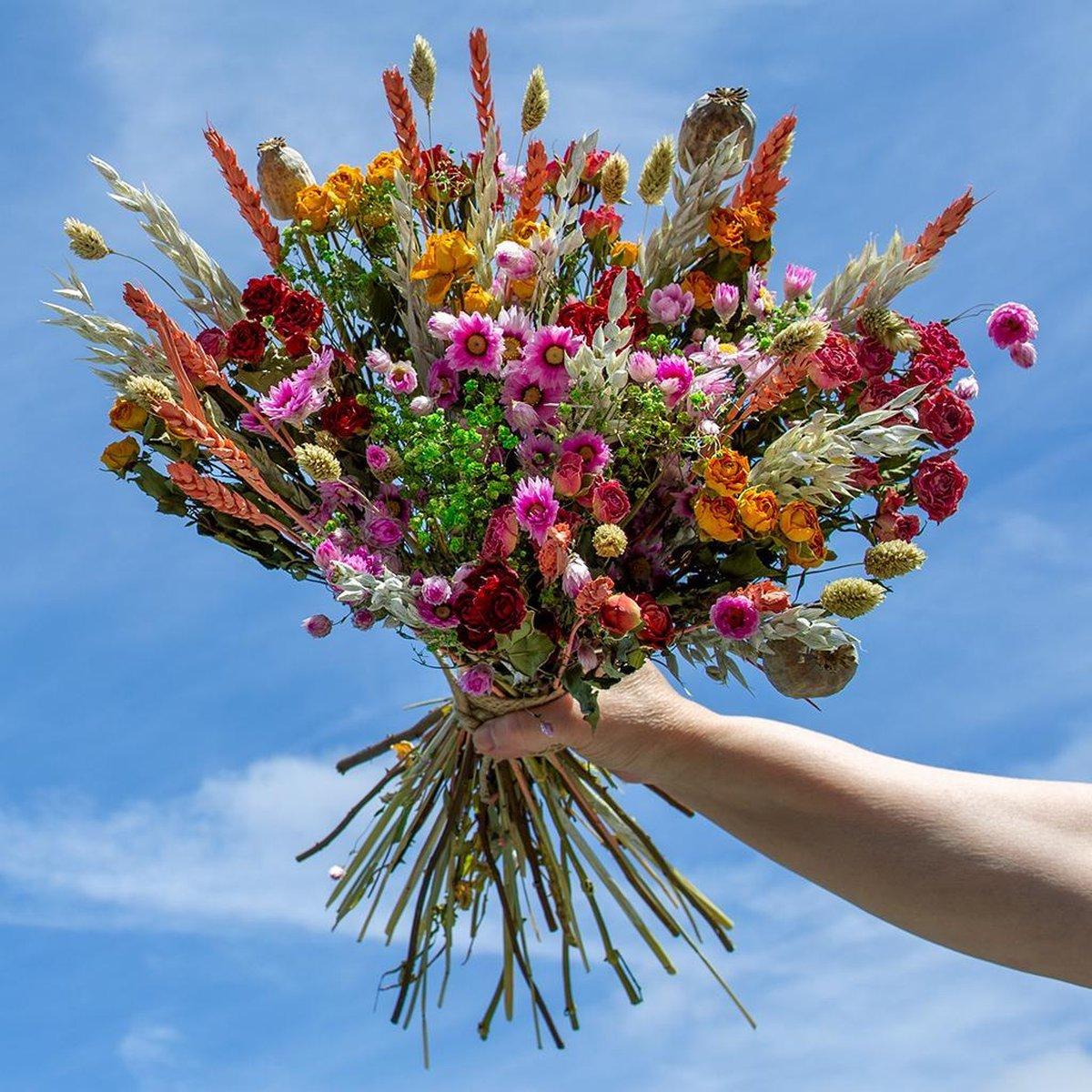 Droogbloemen- Droogboeket Linda - 60 roosjes