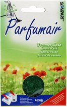Scanpart Parfumair Stofzuigerverfrisser - Geurkorrels - Zomerweide - 4 x 6g - Groen