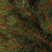 Kingston Pine Deluxe - Groen - BlackBox kunstkerstboom