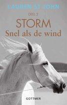 Storm 2 -  Snel als de wind 2