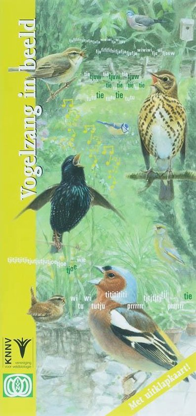 In beeld 16 - Vogelzang in beeld - Dick de Vos |
