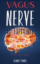 Vagus Nerve All Explained