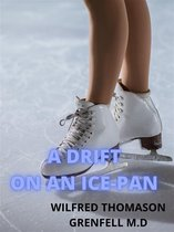 A Drift On An Ice-pan