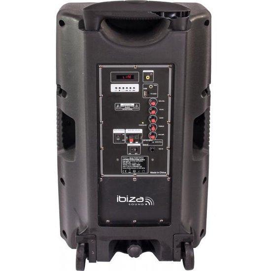 Ibiza Sound PORT-TFT12 - Karaoke set met TFT scherm, oplaadbaar en twee microfoons
